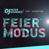 #Preview - DJ Peter Schwarz feat. Signature - Feiermodus