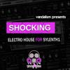 Vandalism Shocking Electro House