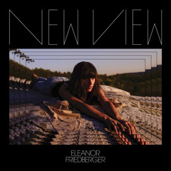 Eleanor Friedberger - He Didn't Mention His Mother