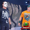 072 WWE Sting, Hulk Hogan news, Look at the flowers Dixie