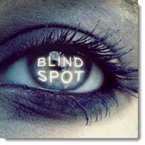 S2E2 Blind Spots