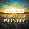 Bobby Hebb - Sunny (Anaa Remix)