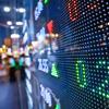 inside Option Asset Management — Leave Your Emotions Before Trading