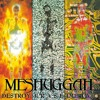 Meshuggah - Future Breed Machine Cover(Take 1)