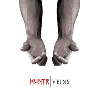 HUNTR Veins Artwork