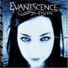Evanescence Bring Me To Life Radcal Jaay And Nic Spiteri Bootleg Mp3