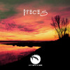 Pieces (A Collection Of Chill House & Finest House Music) [Blue Coffee Records] Preview