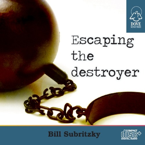 Escaping the Destroyer by Bill Subritzky