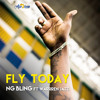 NG Bling feat. Warren Jazz - Fly today
