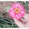 Cinta Pertama - Mikha Tambayong