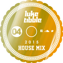 The 2015 House Mix vol.4