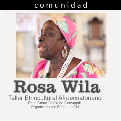 Roman - Rosa Willa