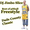 THE BEST OF PITBULL EXCLUSIVE FREESTYLE