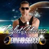 Dinho Secco - Perfect Universe (Cd Promo Set - Out 2015)