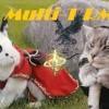 M-T - Epic Bunny's Adventure (Remix)