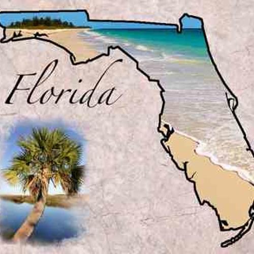 emancipation papers in florida Florida emancipation forms form filing emancipation instructions form emancipation packet in leon county, florida form packet for emancipation comments comments.
