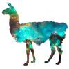 Llamas (Prod. Coco)