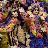 Janmastami 2015 - Abhisek Kirtan at Radha Govinda Mandir