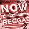 Now That's What I Call Reggae 2 -DJ JUAN MIRANDA