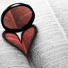 Heart Song - Automatic Loveletter (Cover)