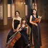 Trio on Popular Irish Folk Tunes by Frank Martin