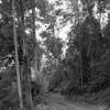 Toorumbee Creek Community - John Linehan - 19 Aug 1989
