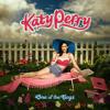 Kokarev Maxim – One Of The Boys (Katy Perry Full Cover) (Recording, Mixing, Mastering))