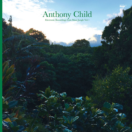 Anthony Child 'All Around And Inside' (EMEGO 215)