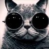 Ray Charles vs Parov Stelar - Hit the catgroove Jack (Scat the Cat Mashup)