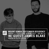 Mount Kimbie x James Blake - Untitled