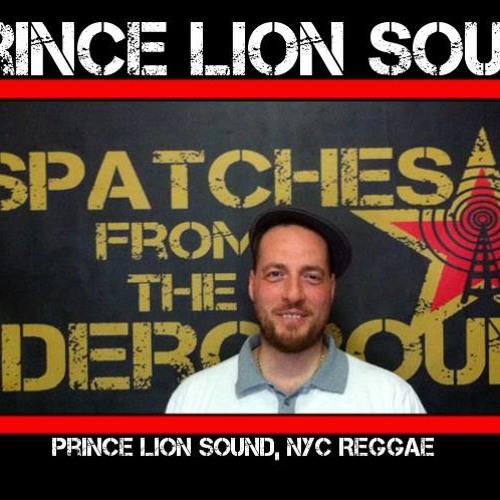 Princelionsound - Mr. Jones