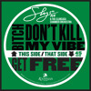 Sly5thave & The Clubcasa Chamber Orchestra - Bitch Don't Kill My Vibe
