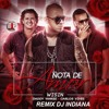 Wisin, Carlos Vives - Nota de Amor ft. Daddy Yankee (REMIX DJ INDIANA)