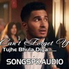 Arjun-Cant-Forget-You(Tujhe-Bhula-Diya-Hai)
