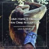Calvin Harris & Disciples - How Deep Is Your Love (Liva K Remix)