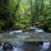 New Album - 'Mountain Stream' recorded in Gunung Halimun National Park, Java
