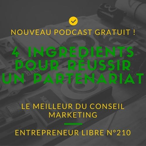 Les 4 Ingrédients pour Réussir sa Demande de Partenariat : Entrepreneur Libre n°210