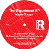 Premiere: Wayne Duggan - Experiment 1 (Matthias Meyer And Patlac Remix) [RePublik Music]