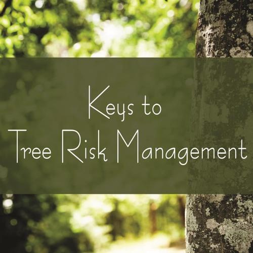 Keys to Tree Risk Management