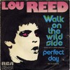 Lou Reed - Perfect Day (Cover)