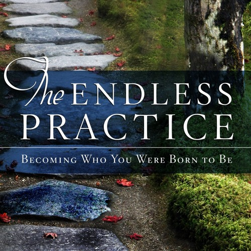 Mark Nepo - The Endless Practice