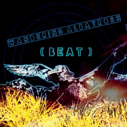 Xtra Midwest-Wandering Albatross inst