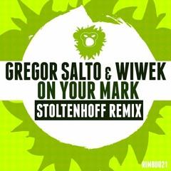 Gregor Salto & Wiwek - On Your Mark (Stoltenhoff Remix)