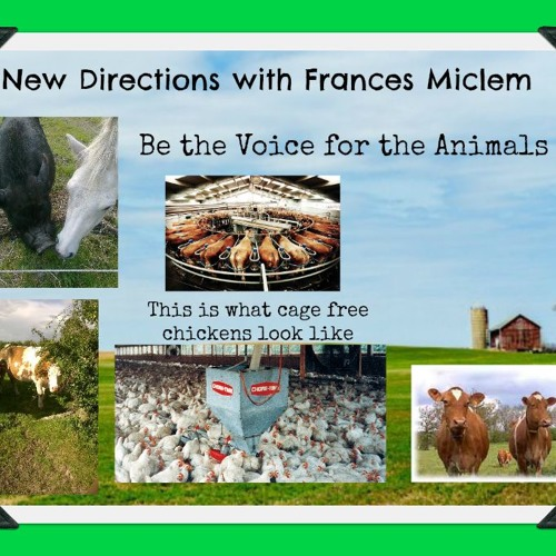 New Directions - Frances Micklem - Be the Voice for the Animals