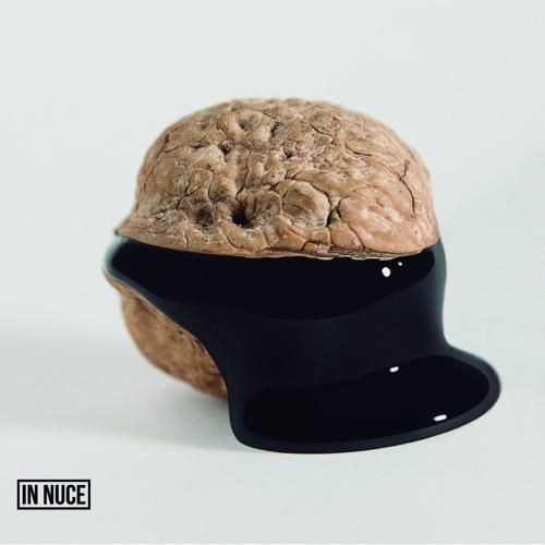 In Nuce
