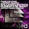 TEARS FOR FEARS, FRANKY RIZARDO, ROUL e DOORS, MASTIKSOUL - ELEMENTS OF SHOUT(ANTONY FENNEL MASHUP)