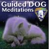 Dog Sleep Meditation