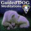 Healing-Anxiety-Throat Chakra Dog Meditation