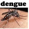 Delhi government orders magisterial inquiry into the death of a seven-year old dengue patient.