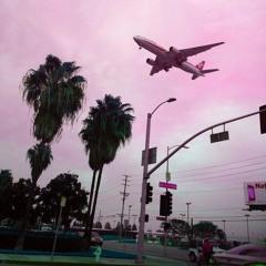 Flight' [Sosa_69KG]